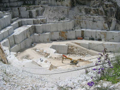 The Truth About Calacatta Marble | MSI Blog