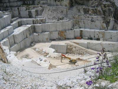 Carrara+Marble