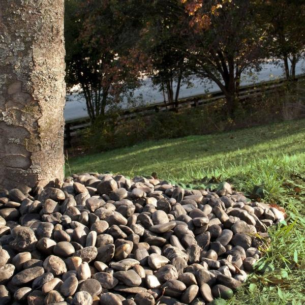 tree base covering with ebony pebbles