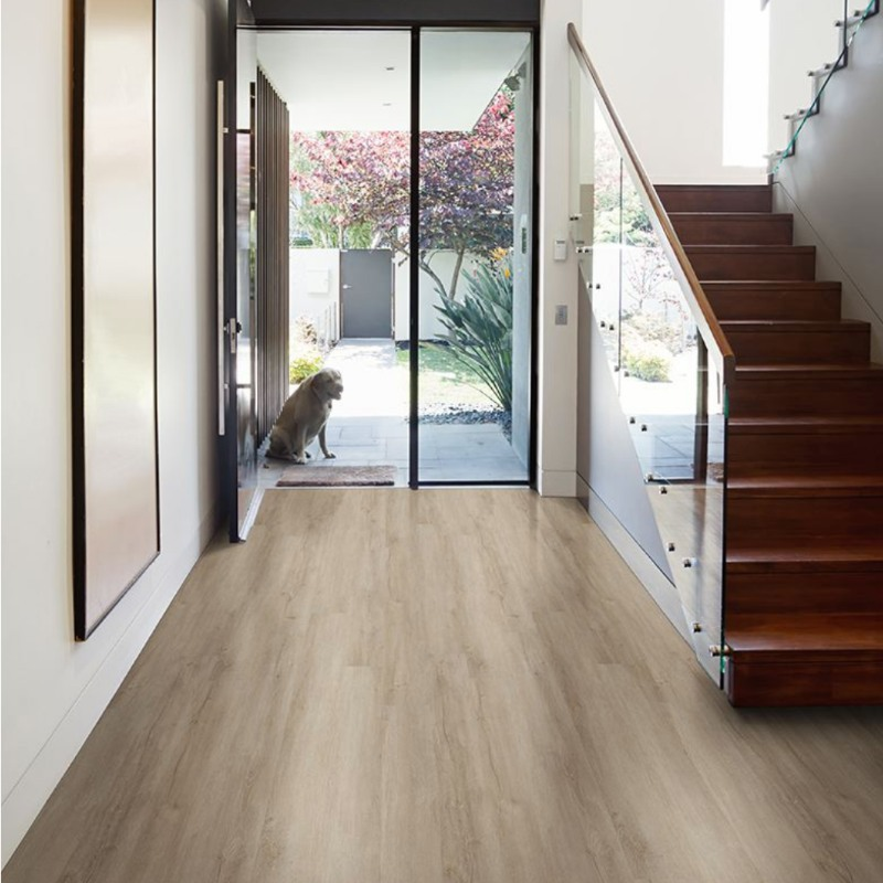 entry way in a modern home with vinyl flooring