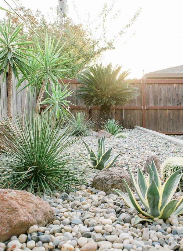 msi-amazon-pebbles-mid-century-modern-backyard-
