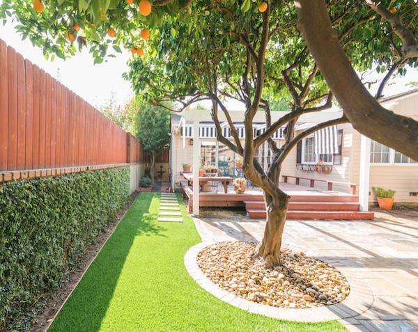 msi-yellow-polished-pebbles-in-modern-los-angeles-backyard