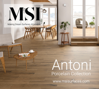 Antoni New Product Introduction