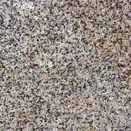 New Giallo Fantasia Granite Countertop