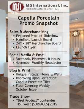 capella-promotional-snapshot