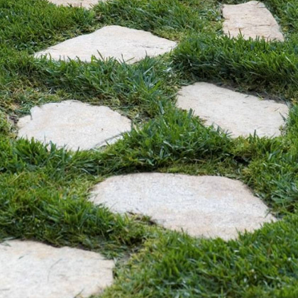 stepping-stones-msi-v2