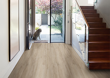 Vinyl Flooring Low Cost and Install