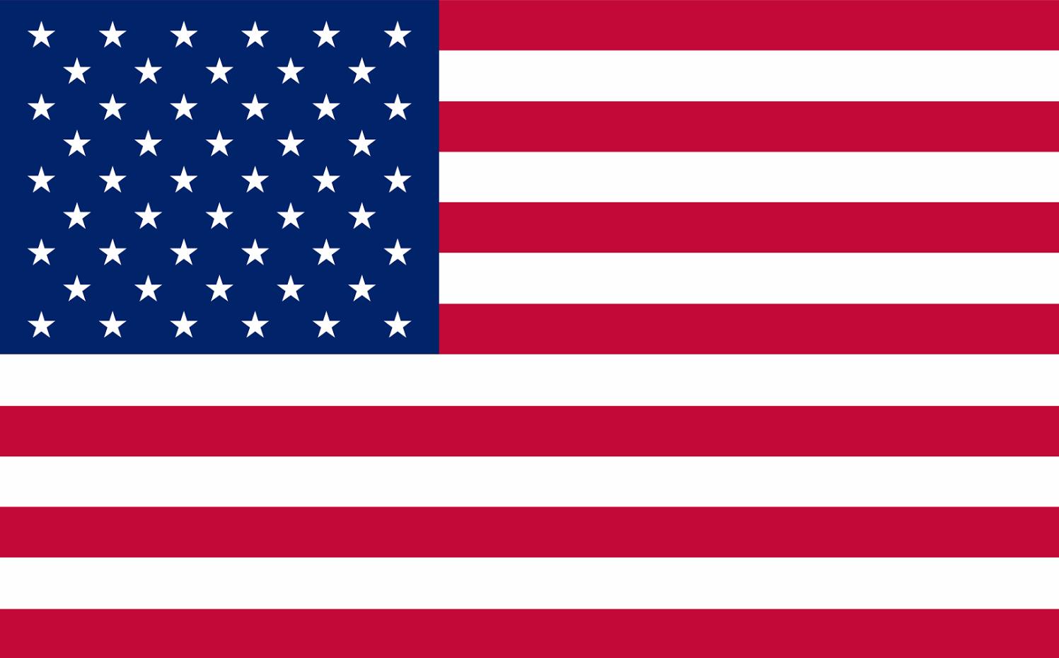 american flag vector slogo