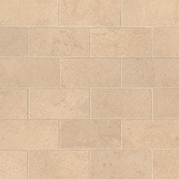 Aria Cremita 2X4 Mosaic Polished Subway Tile