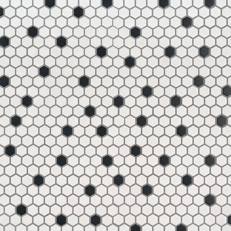 Black And White 1X1 Hexagon Matte